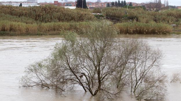 fiume simeto, ventenni dispersi, Sicilia, Archivio