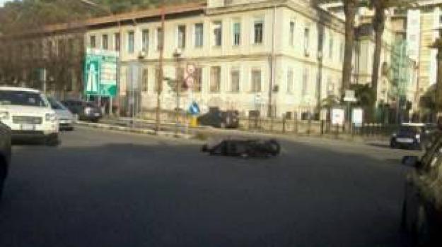 svincolo boccetta, Messina, Archivio