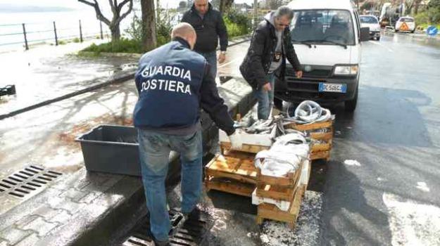 sequestro pesce, Messina, Archivio