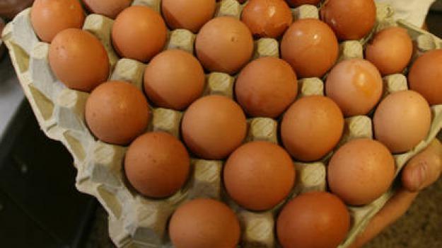 carne, uova, Sicilia, Archivio
