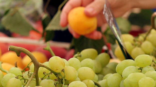 frutta, scuole elementari, Calabria, Archivio