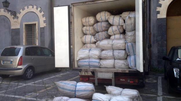 droga, Sicilia, Archivio