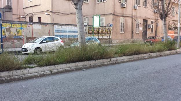 verde pubblico, Messina, Archivio