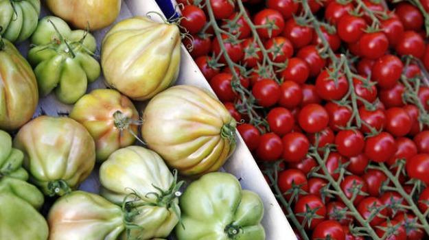 caro prezzi, esposto codacons, frutta e verdura, sicilia, Sicilia, Archivio