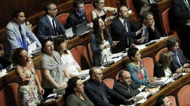 protesta senato, Sicilia, Archivio, Cronaca