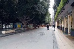 Messina, al via lavori di potatura degli alberi di piazza Cairoli