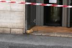 Ordigno esplosivo davanti alla filiale Deutsche Bank