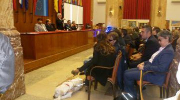 cani guida, ciechi, Messina, Archivio