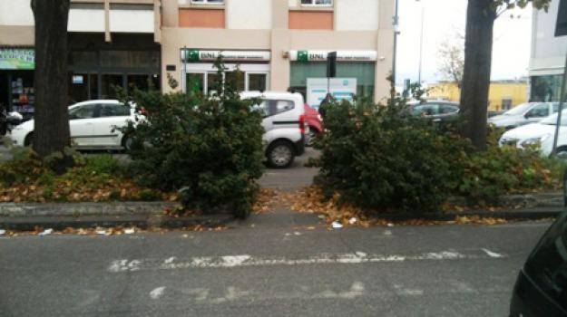 erbe, via garibaldi, Messina, Archivio