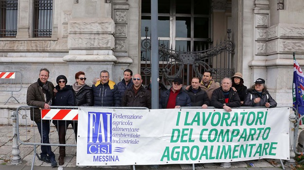 agroalimentare, messina, Messina, Archivio