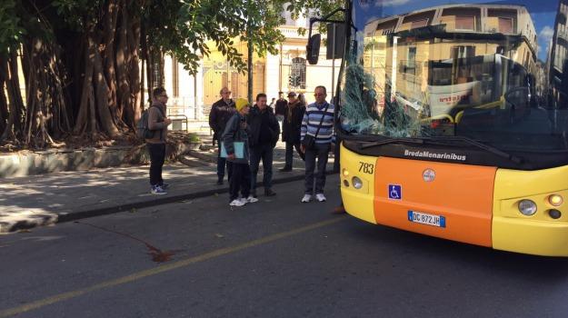 autobus, pedone, Messina, Archivio