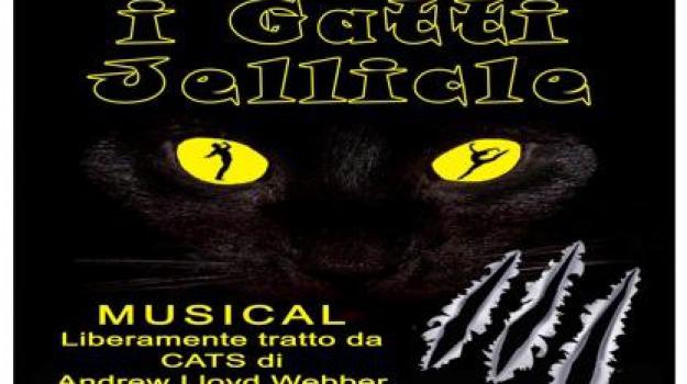 christian gravina, i gatti di jellicle, messina, Messina, Archivio