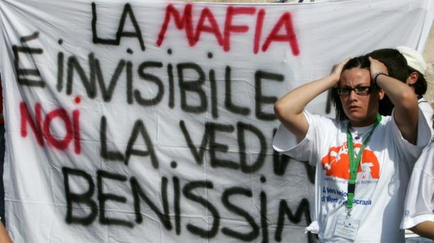 mafia, palermo, questionario, studenti, Sicilia, Archivio