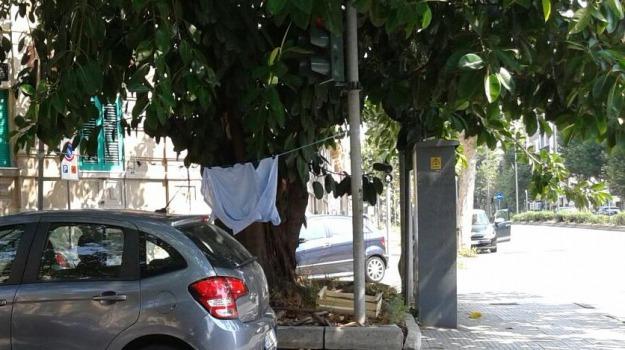 camicia  appesa, Messina, Archivio