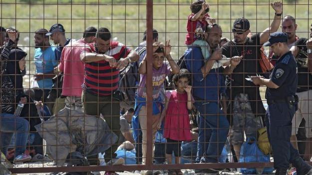 arresti, migranti, serbia, ungheria, Sicilia, Archivio, Cronaca