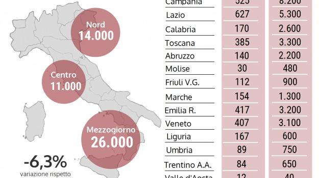 allarme carni, demoskopika, effetti, oms, Cosenza, Calabria, Archivio