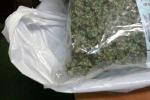 Detenzione e spaccio di marijuana, la Procura di Vibo emette sette avvisi di garanzia