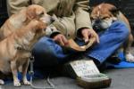"""Palermo """"accanto agli ultimi"""": al via i vaccini per i senzatetto"""