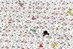 Dove sono il panda e il gatto? Ecco i rompicapi di Natale