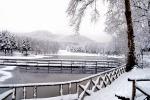 Gambarie, magia della neve
