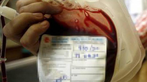 catanzaro, inchiesta, sangue infetto, Calabria, Archivio