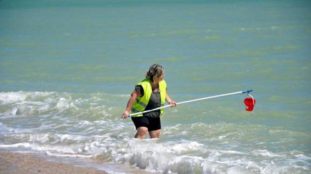 divieto di balneazione, mare, reggio calabria, Reggio, Calabria, Cronaca