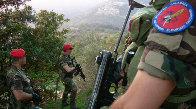 'ndrangheta, arresti, clan piromali, gioia tauro, Reggio, Calabria, Archivio