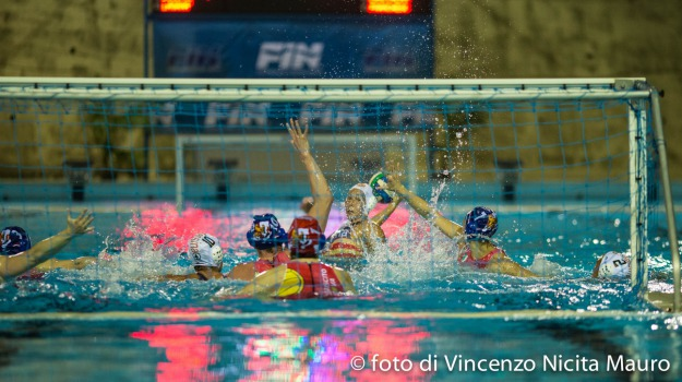 plebiscito padova, waterpolo despar messina, Messina, Sport