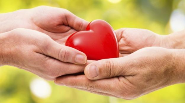 Giornata della donazione degli organi, Messina, Archivio