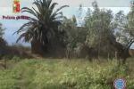 Il video dei luoghi dell'omicidio Ventura