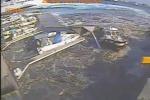 La Carnival Vista spazza via il molo, il video