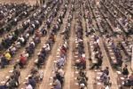 Pubblica amministrazione, sbloccate più di 5mila assunzioni dai ministeri all'Aci