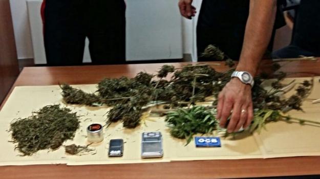 Arrestato 21enne, cannabis, ispica, Sicilia, Archivio