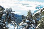 La neve arriva in Sila