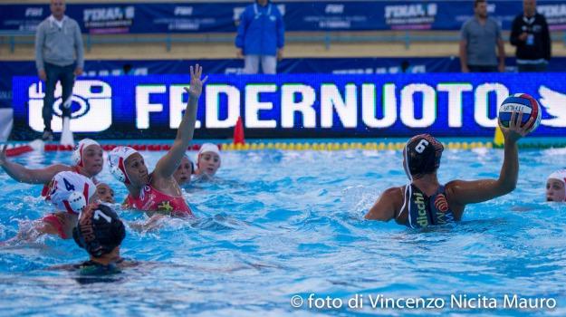 eurolega, piscina cappuccini, waterpolo desparmessina, Messina, Sicilia, Sport