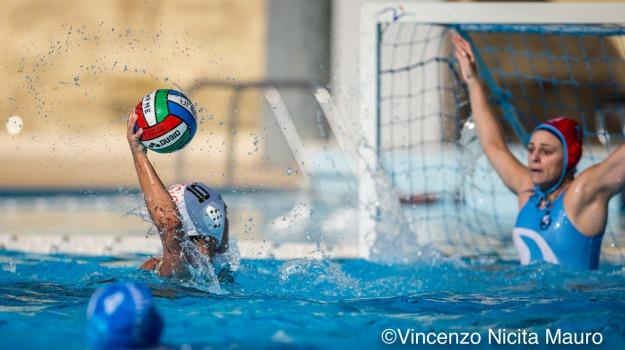 cosenza, pallanuoto, wp messina, Messina, Sport