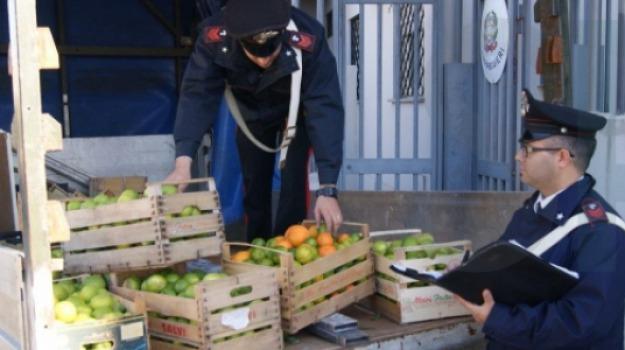 Arrestati due giovani di Rosolini, Arrestati romeni, furto cavi di rame, Furto limoni, ispica, Sicilia, Archivio