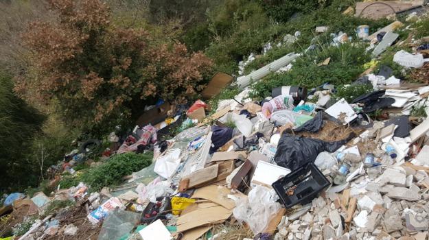 rifiuti, salice, Messina, Archivio