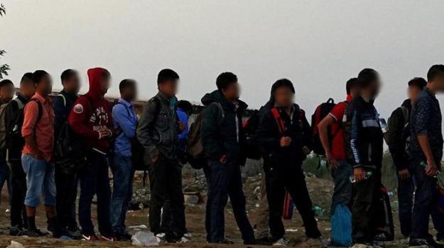 migranti, sant'alessio d'aspromonte, Reggio, Calabria, Archivio