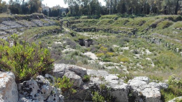 anfiteatro, erbacce, siracusa, Sicilia, Archivio