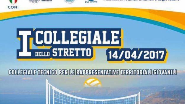 collegiale dello stretto, pallavolo, Reggio, Messina, Archivio