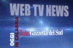 TG WEB CALABRIA 01/04/17