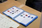 Abramo e Ciconte al voto/Gallery
