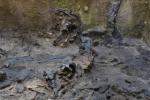 """Una """"Mini Pompei"""" tra gli scavi della metro - LE FOTO"""
