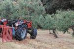 In provincia di Cosenza agricoltore muore schiacciato dal suo trattore