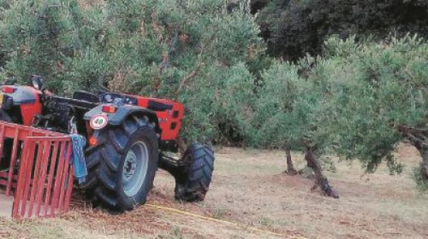 agricoltore schiacciato trattore, Vincenzo Le Pera, Cosenza, Calabria, Cronaca