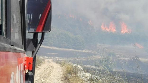 Chiaramonte, incendio pineta, Sicilia, Archivio