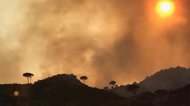 campagna, incendi, messina, protezione civile, Messina, Archivio