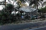 Reggio, crolla un albero, distrutto un gazebo