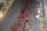 Messina, colpi di pistola fuori dal lido, ferita una ragazza
